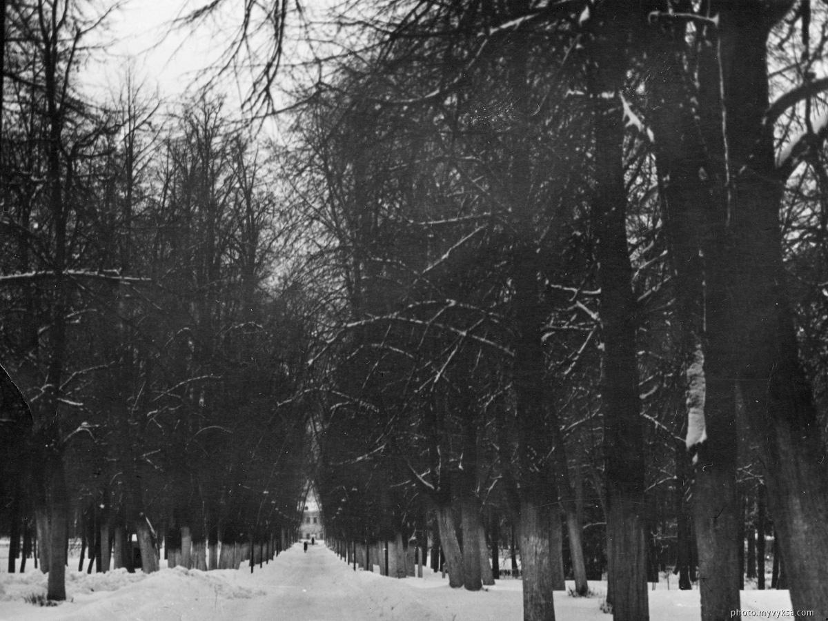 Главная аллея. Выкса. Парк — фото старой Выксы
