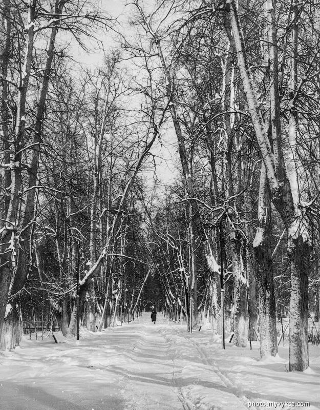 Аллея в парке зимой. Выкса — фото старой Выксы