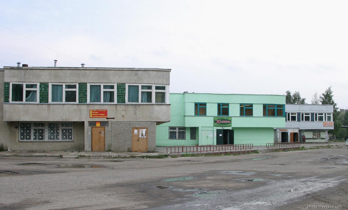 Микрорайон Жуковского. Выкса